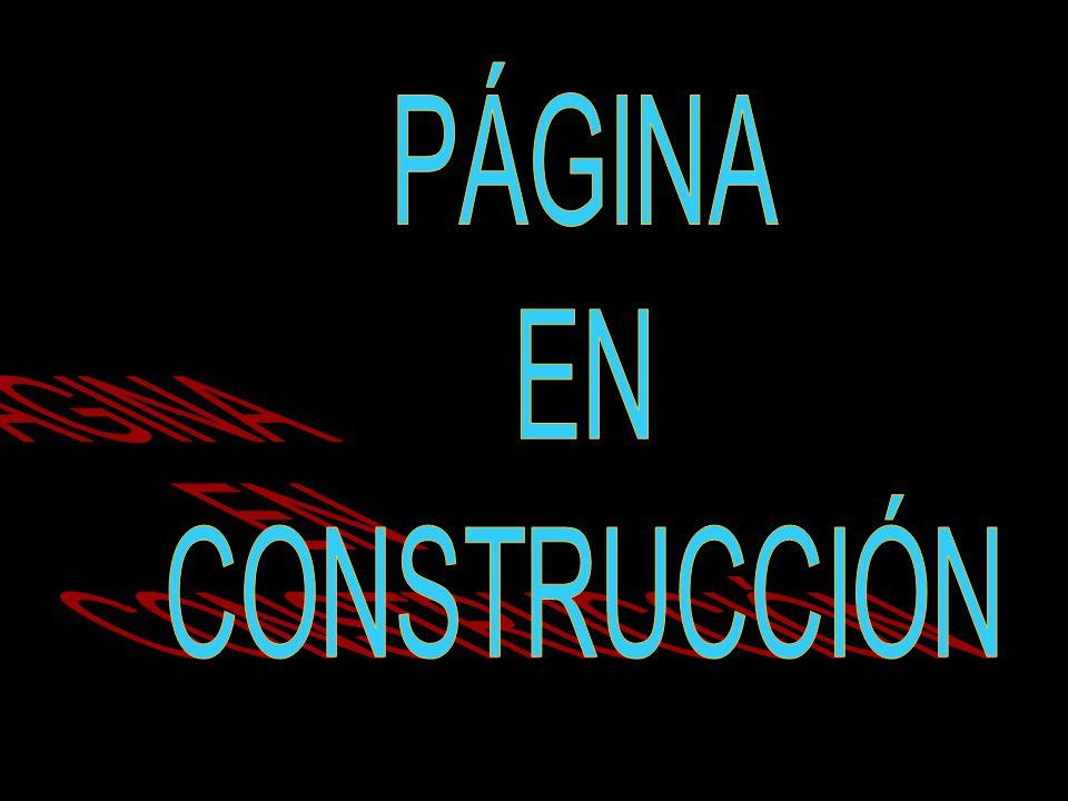 DIRECTORAS Ingrid Acendra Redondo, Cecilia Mendoza Lubo, Lorena Ramos.