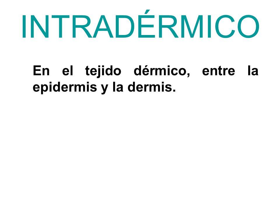 INTRADÉRMICO En el tejido dérmico, entre la epidermis y la dermis.
