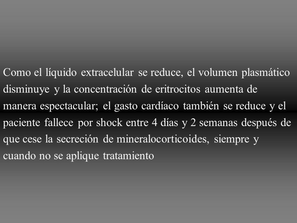 Como el líquido extracelular se reduce, el volumen plasmático disminuye y la concentración de eritrocitos aumenta de manera espectacular; el gasto car