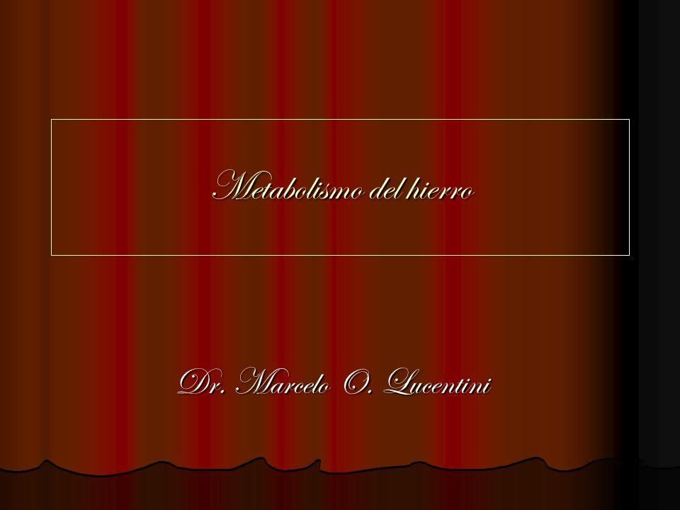 Metabolismo del hierro Dr. Marcelo O. Lucentini