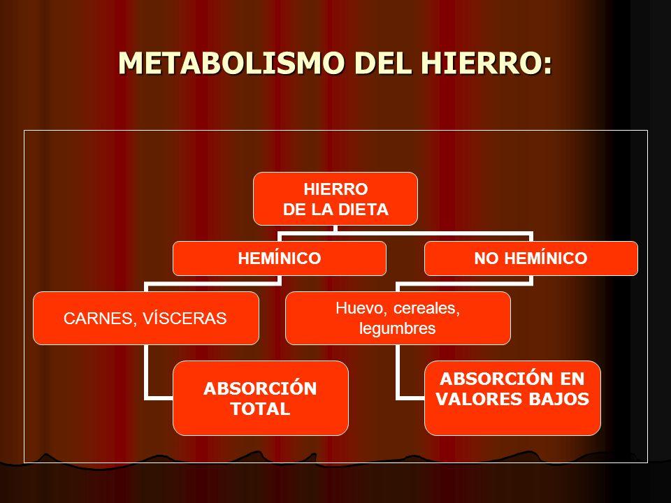 METABOLISMO DEL HIERRO: HIERRO DE LA DIETA HEMÍNICO CARNES, VÍSCERAS ABSORCIÓN TOTAL NO HEMÍNICO Huevo, cereales, legumbres ABSORCIÓN EN VALORES BAJOS