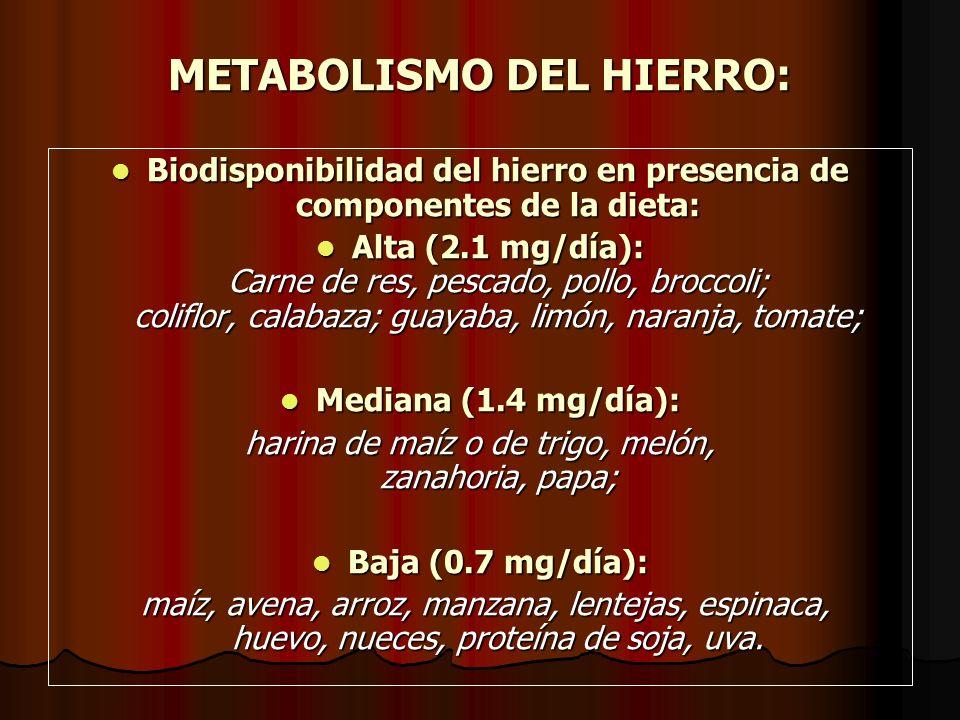 METABOLISMO DEL HIERRO: El hombre ingiere entre 10 y 20 mg/día de hierro, del cual se absorbe sólo el 10%.