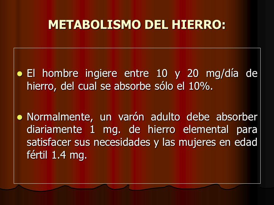 METABOLISMO DEL HIERRO: El hombre ingiere entre 10 y 20 mg/día de hierro, del cual se absorbe sólo el 10%. El hombre ingiere entre 10 y 20 mg/día de h