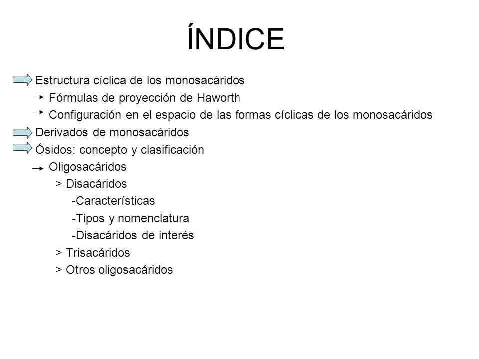 ÍNDICE Estructura cíclica de los monosacáridos Fórmulas de proyección de Haworth Configuración en el espacio de las formas cíclicas de los monosacárid