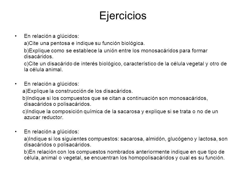 Ejercicios En relación a glúcidos: a)Cite una pentosa e indique su función biológica. b)Explique como se establece la unión entre los monosacáridos pa