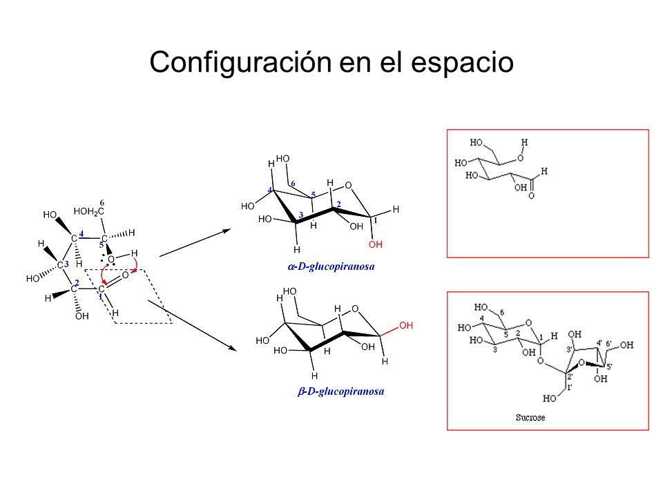 Otros oligosacáridos Fructosanos: formados por un resto de glucosa y varias unidades de fructosa.