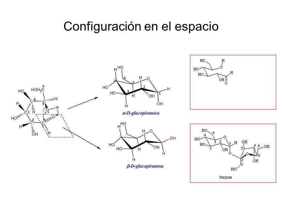 Derivados de monosacáridos Derivados por reducción : Mio-inositol D-2-desoxirribosa POLIALCOHOLES: por reducción transforman su grupo funcional característico en un alcohol.