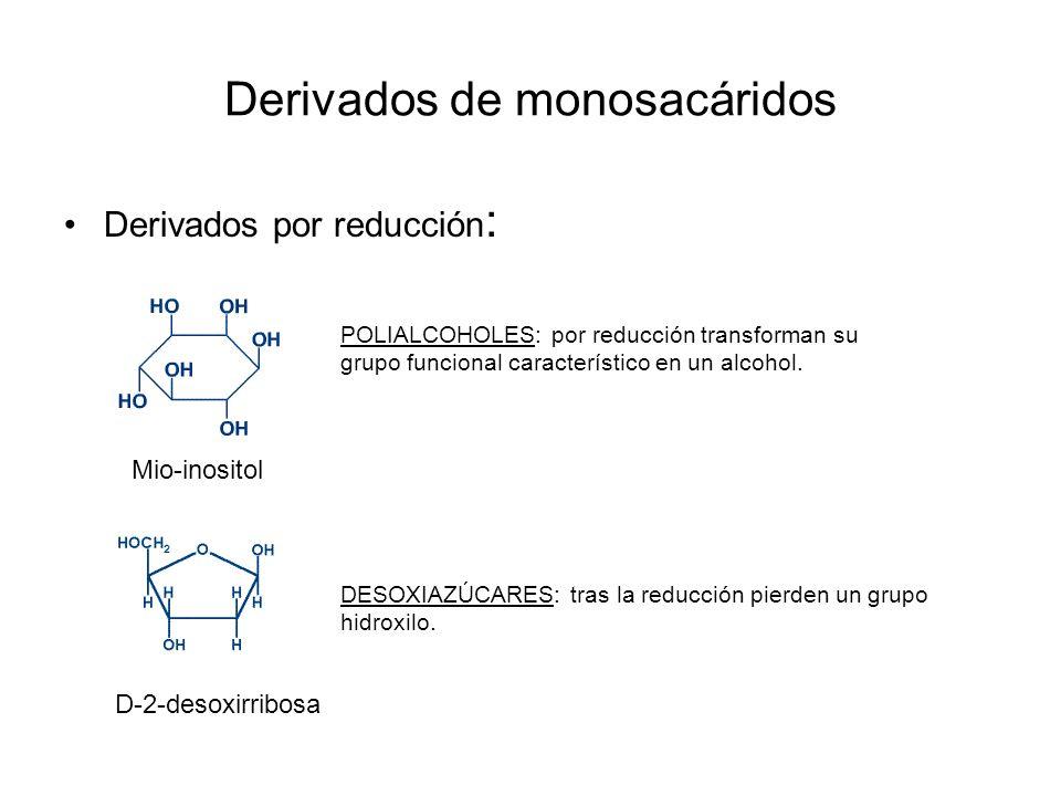 Derivados de monosacáridos Derivados por reducción : Mio-inositol D-2-desoxirribosa POLIALCOHOLES: por reducción transforman su grupo funcional caract