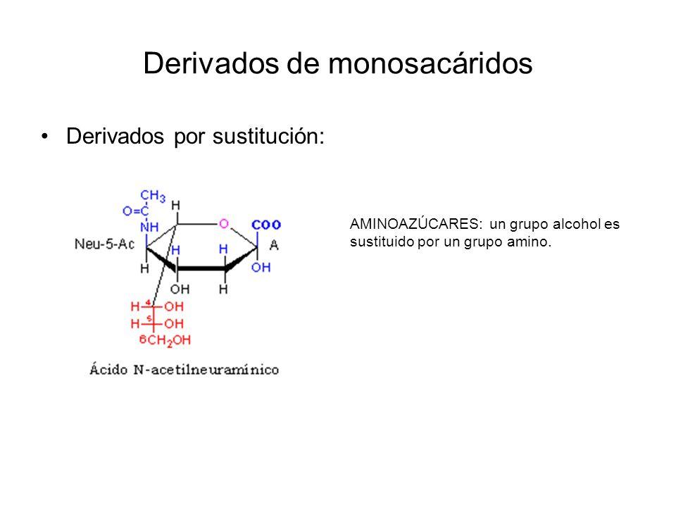 Derivados de monosacáridos Derivados por formación de ésteres: ÉSTERES FOSFÓRICOS: unidos mediante ésteres a un grupo fosfato.