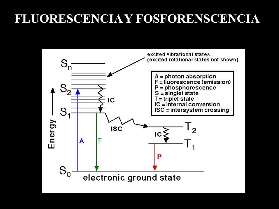 FLUORESCENCIA Y FOSFORENSCENCIA