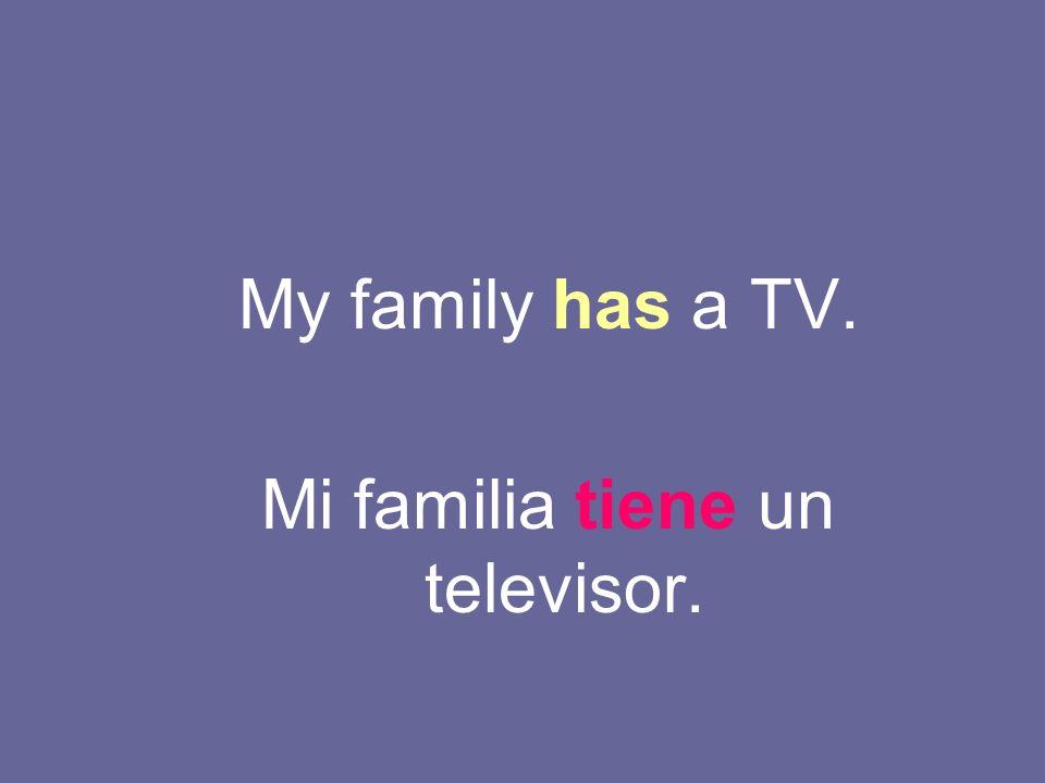 My family has a TV. Mi familia tiene un televisor.