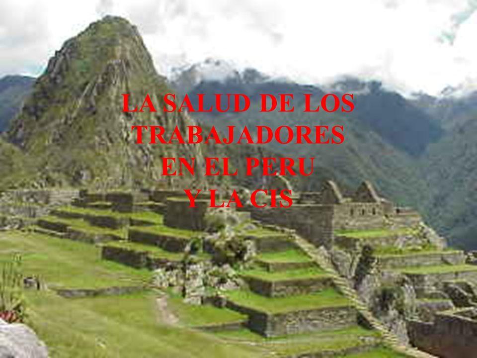 LA SALUD DE LOS TRABAJADORES EN EL PERU Y LA CIS