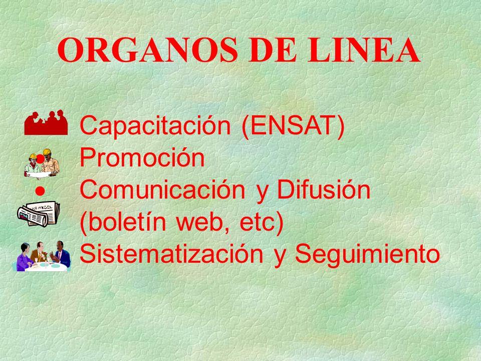 ORGANOS DE LINEA Capacitación (ENSAT) Promoción Comunicación y Difusión (boletín web, etc) Sistematización y Seguimiento