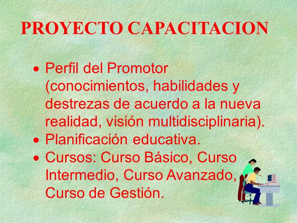 PROYECTO CAPACITACION Perfil del Promotor (conocimientos, habilidades y destrezas de acuerdo a la nueva realidad, visión multidisciplinaria).