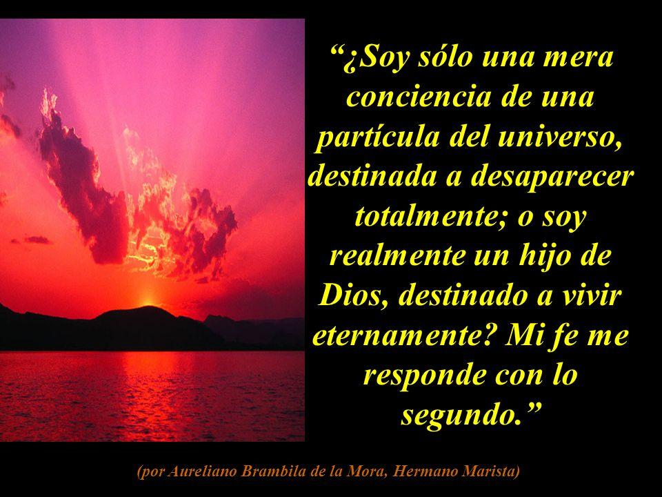 ¿Soy sólo una mera conciencia de una partícula del universo, destinada a desaparecer totalmente; o soy realmente un hijo de Dios, destinado a vivir eternamente.