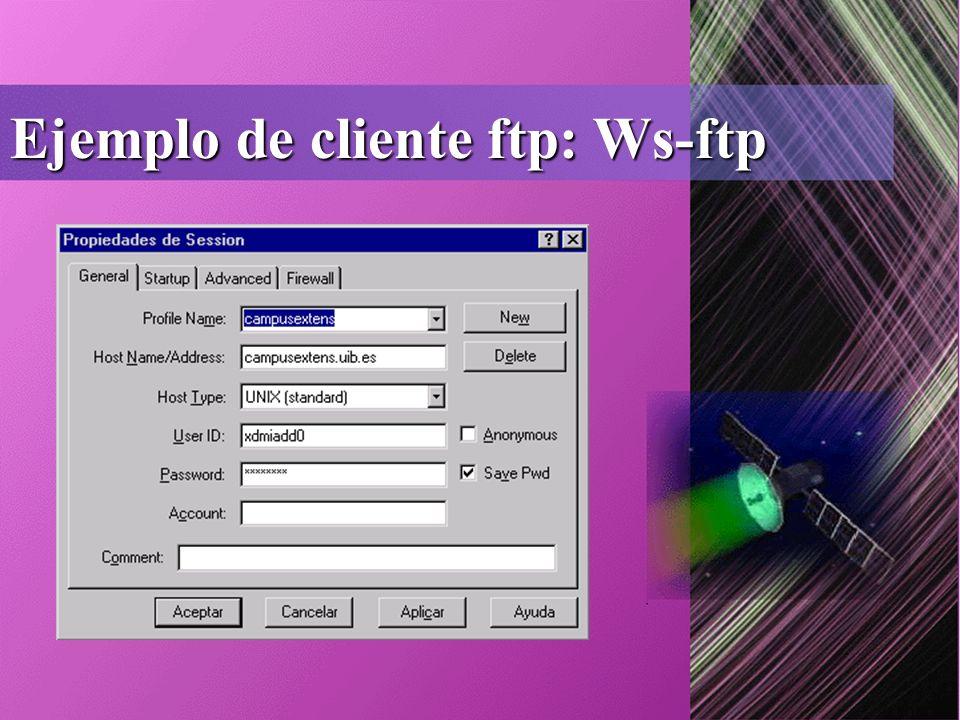 Ejemplo de cliente ftp: Ws-ftp