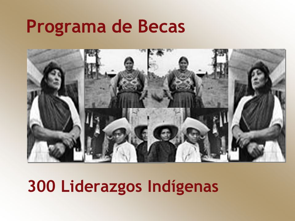Programa de Becas 300 Liderazgos Indígenas