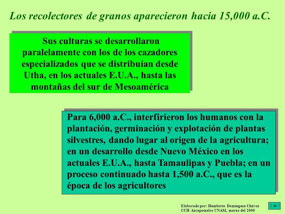 Existieron DOS tradiciones agrícolas: Para 4,000 a.C., se ha localizado maíz en Bat Cave Nuevo México EUA, y en Tamaulipas hacia 3,000 a.C.