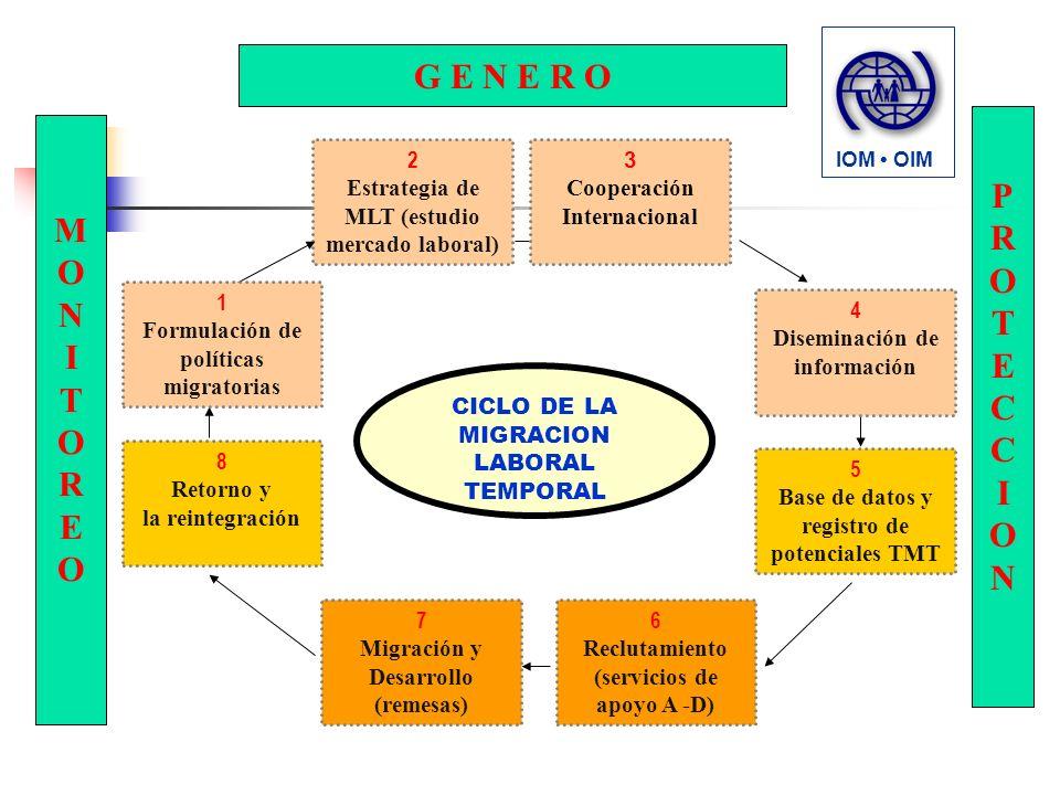2 Estrategia de MLT (estudio mercado laboral) CICLO DE LA MIGRACION LABORAL TEMPORAL MONITOROMONITORO 3 Cooperación Internacional 1 Formulación de políticas migratorias 4 Diseminación de información 5 Base de datos y registro de potenciales TMT 8 Retorno y la reintegración 6 Reclutamiento (servicios de apoyo A -D) 7 Migración y Desarrollo (remesas) IOM OIM PROTECCIONPROTECCION G E N E R O MONITOREOMONITOREO