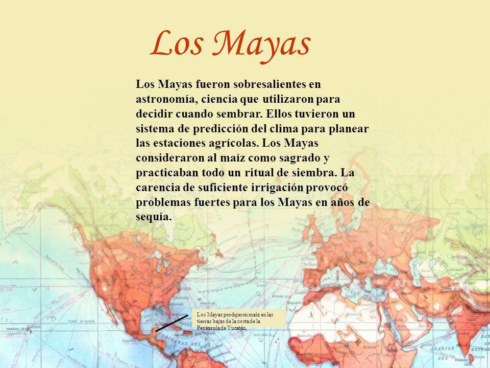 Los Mayas fueron sobresalientes en astronomía, ciencia que utilizaron para decidir cuando sembrar. Ellos tuvieron un sistema de predicción del clima p