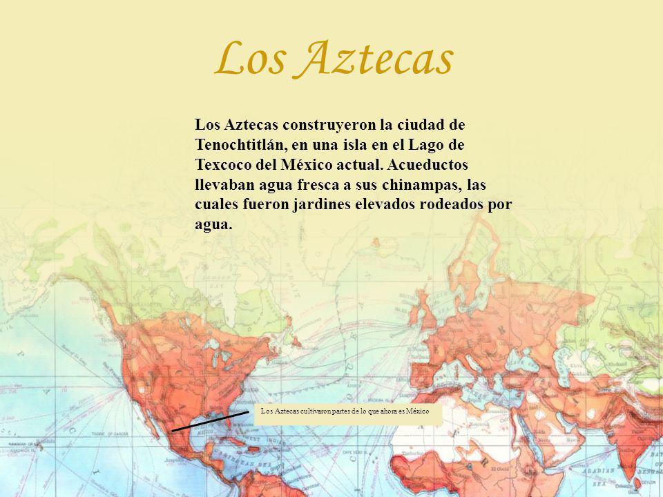 Los Aztecas construyeron la ciudad de Tenochtitlán, en una isla en el Lago de Texcoco del México actual. Acueductos llevaban agua fresca a sus chinamp