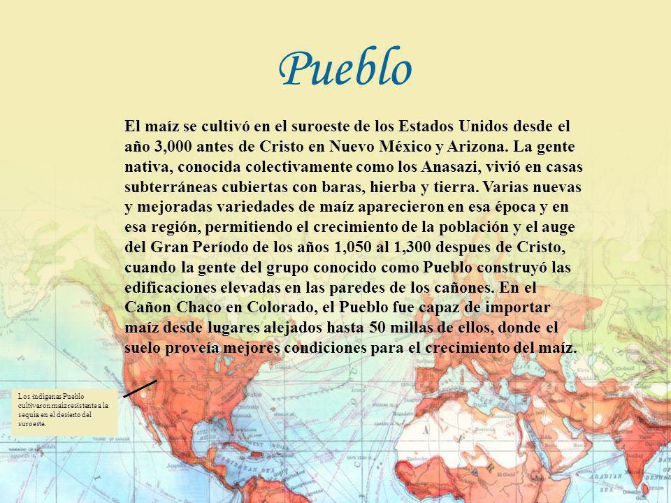 El maíz se cultivó en el suroeste de los Estados Unidos desde el año 3,000 antes de Cristo en Nuevo México y Arizona. La gente nativa, conocida colect