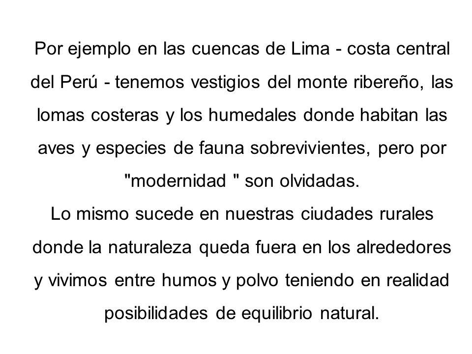 Por ejemplo en las cuencas de Lima - costa central del Perú - tenemos vestigios del monte ribereño, las lomas costeras y los humedales donde habitan las aves y especies de fauna sobrevivientes, pero por modernidad son olvidadas.