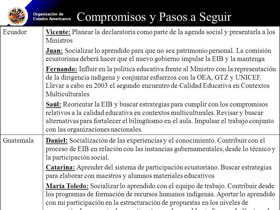 Organización de Estados Americanos EcuadorVicente: Planear la declaratoria como parte de la agenda social y presentarla a los Ministros Juan: Socializar lo aprendido para que no sea patrimonio personal.