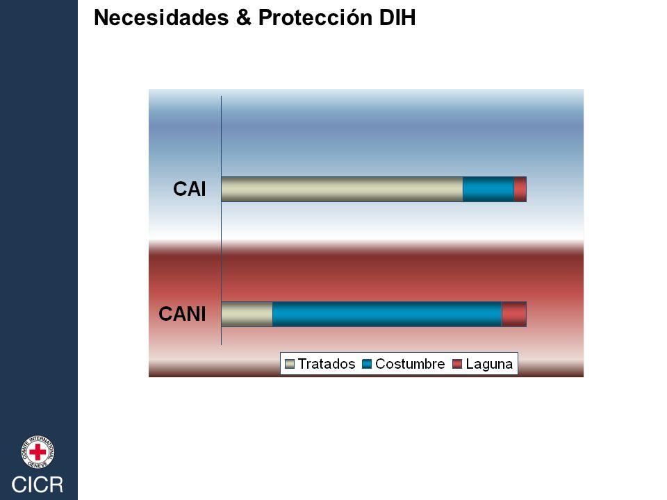 Necesidades & Protección DIH