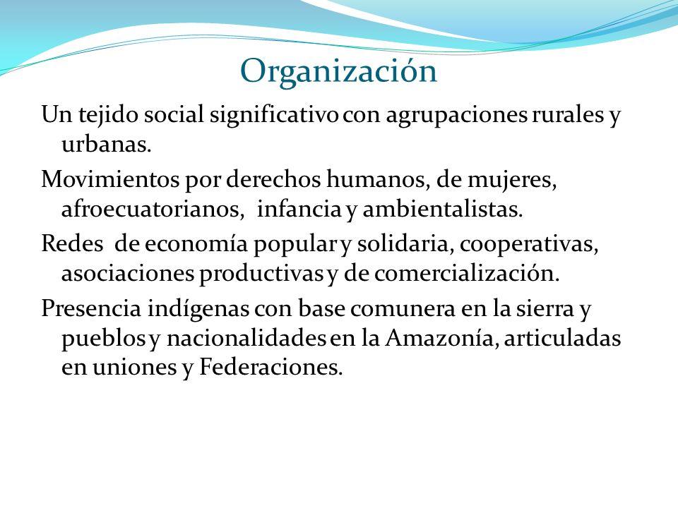 Organización Un tejido social significativo con agrupaciones rurales y urbanas. Movimientos por derechos humanos, de mujeres, afroecuatorianos, infanc