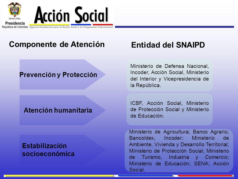 Prevención y Protección Estabilización socioeconómica Atención humanitaria ICBF, Acción Social, Ministerio de Protección Social y Ministerio de Educac