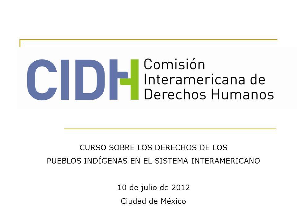 CURSO SOBRE LOS DERECHOS DE LOS PUEBLOS INDÍGENAS EN EL SISTEMA INTERAMERICANO 10 de julio de 2012 Ciudad de México