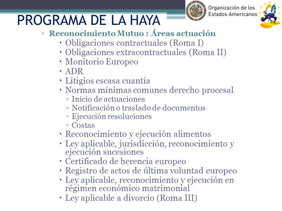 PROGRAMA DE LA HAYA Reconocimiento Mutuo : Áreas actuación Obligaciones contractuales (Roma I) Obligaciones extracontractuales (Roma II) Monitorio Eur