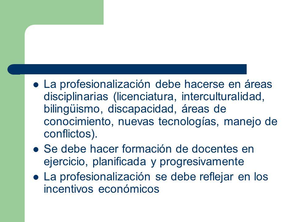 La profesionalización debe hacerse en áreas disciplinarias (licenciatura, interculturalidad, bilingüismo, discapacidad, áreas de conocimiento, nuevas