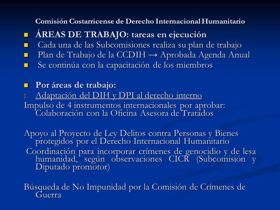 Comisión Costarricense de Derecho Internacional Humanitario ÁREAS DE TRABAJO: tareas en ejecución ÁREAS DE TRABAJO: tareas en ejecución Cada una de la