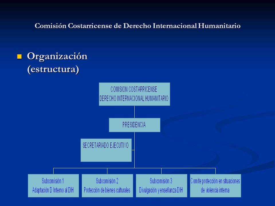 Comisión Costarricense de Derecho Internacional Humanitario Organización (estructura) Organización (estructura)