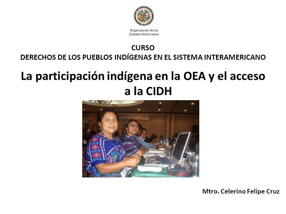 CURSO DERECHOS DE LOS PUEBLOS INDÍGENAS EN EL SISTEMA INTERAMERICANO La participación indígena en la OEA y el acceso a la CIDH Mtro. Celerino Felipe C
