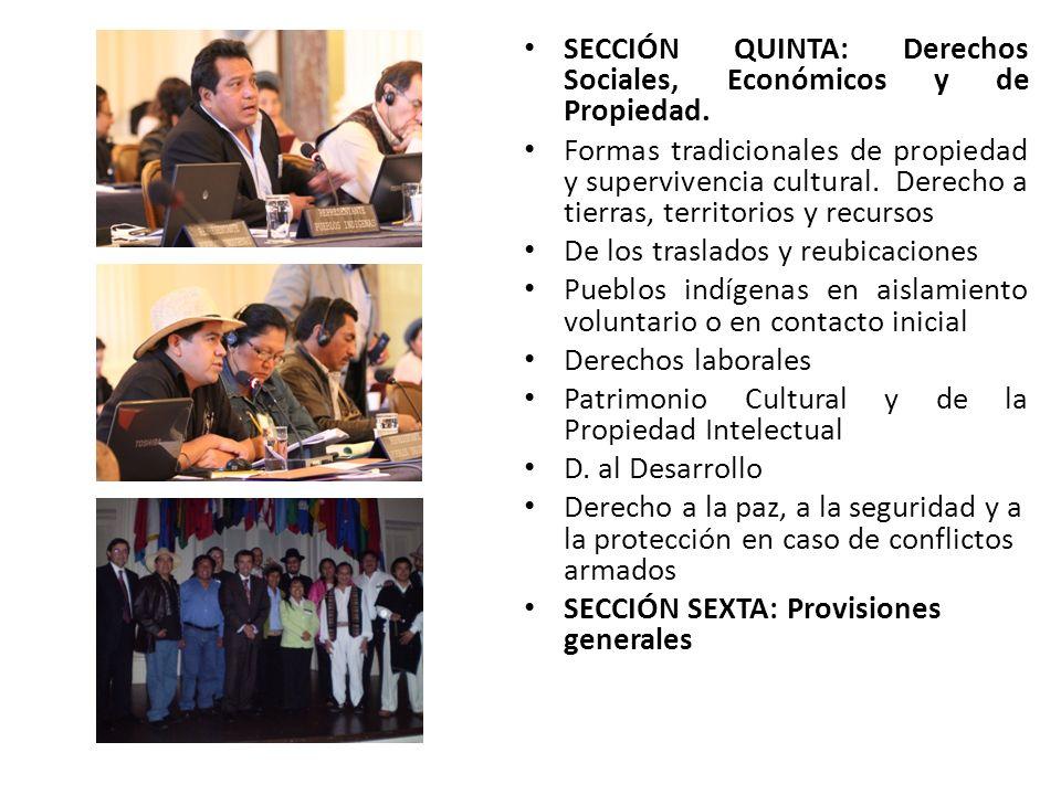 SECCIÓN QUINTA: Derechos Sociales, Económicos y de Propiedad. Formas tradicionales de propiedad y supervivencia cultural. Derecho a tierras, territori