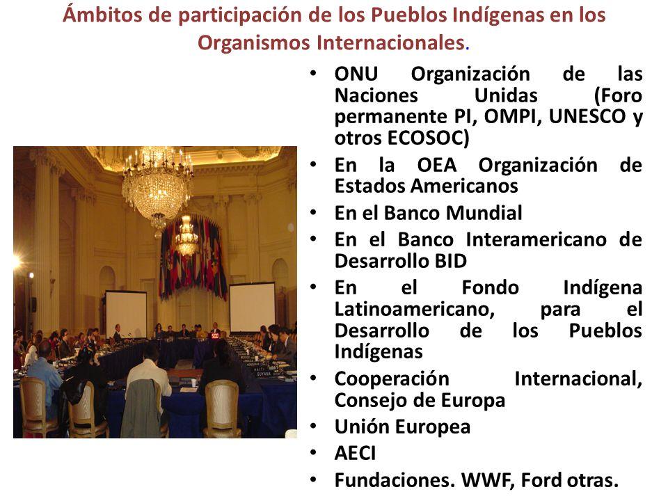 Ámbitos de participación de los Pueblos Indígenas en los Organismos Internacionales. ONU Organización de las Naciones Unidas (Foro permanente PI, OMPI