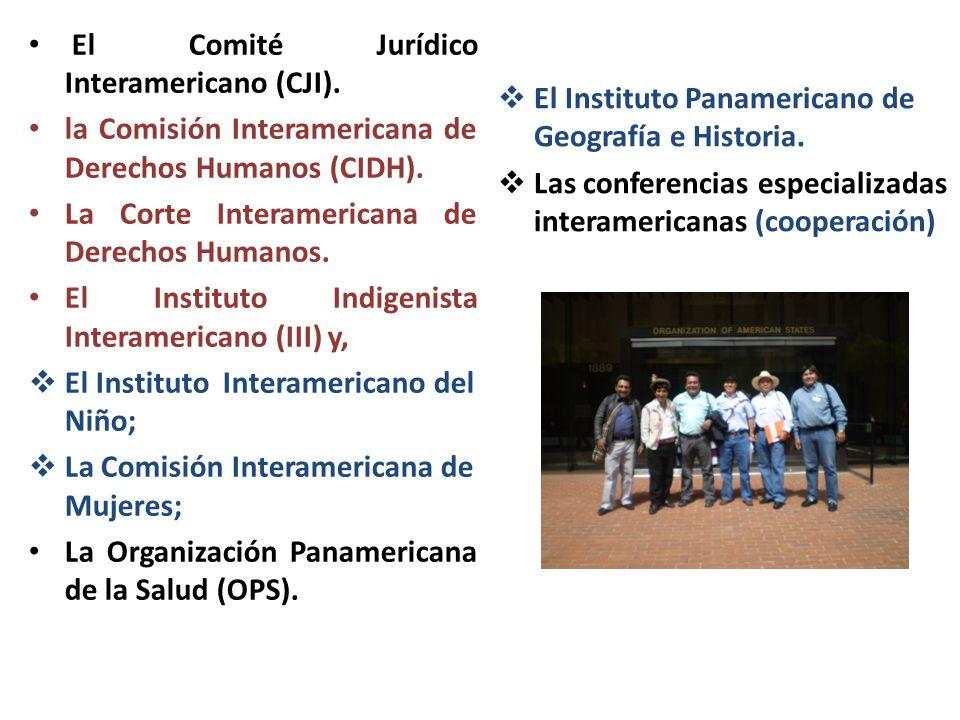 El Comité Jurídico Interamericano (CJI). la Comisión Interamericana de Derechos Humanos (CIDH). La Corte Interamericana de Derechos Humanos. El Instit