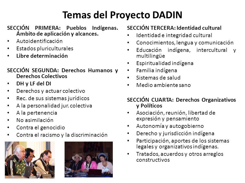 Temas del Proyecto DADIN SECCIÓN PRIMERA: Pueblos Indígenas. Ámbito de aplicación y alcances. Autoidentificación Estados pluriculturales Libre determi
