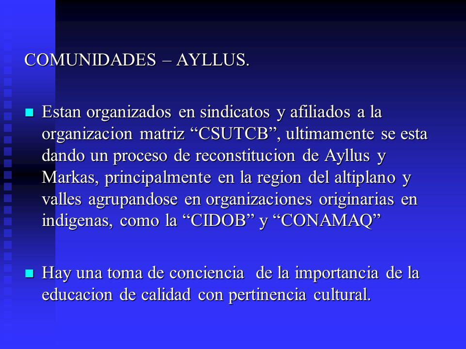COMUNIDADES – AYLLUS. Estan organizados en sindicatos y afiliados a la organizacion matriz CSUTCB, ultimamente se esta dando un proceso de reconstituc