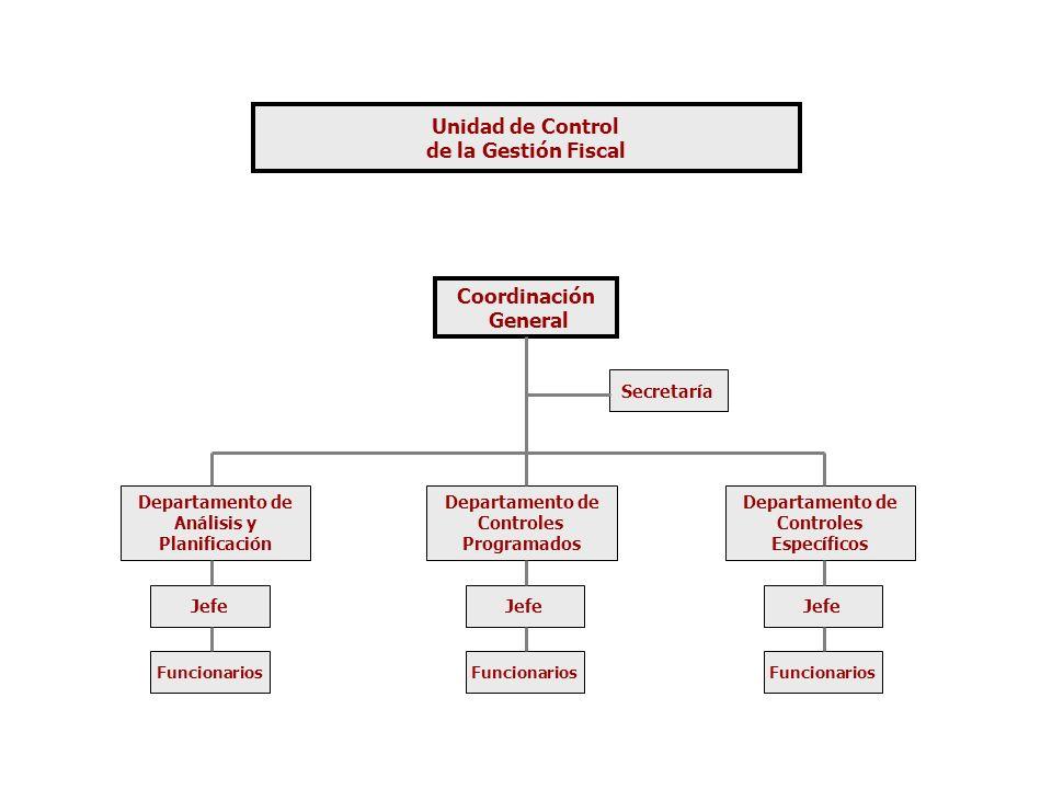 Unidad de Control de la Gestión Fiscal Coordinación General Secretaría Departamento de Análisis y Planificación Departamento de Controles Programados Departamento de Controles Específicos Jefe Funcionarios