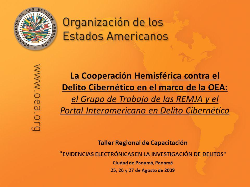 La Cooperación Hemisférica contra el Delito Cibernético en el marco de la OEA: el Grupo de Trabajo de las REMJA y el Portal Interamericano en Delito C