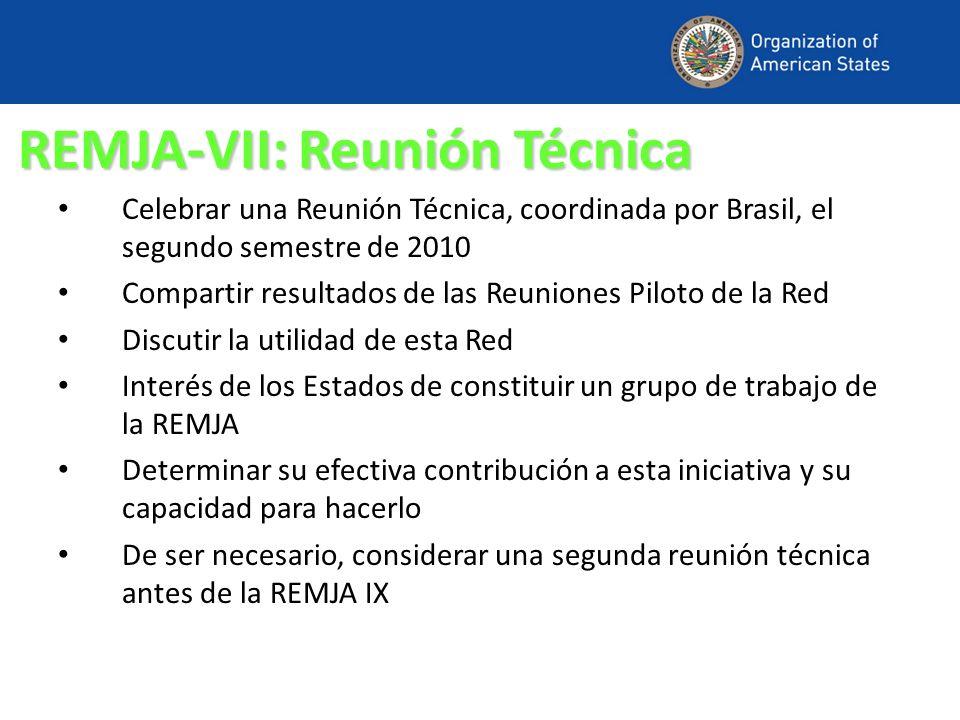 REMJA-VII: Reunión Técnica Celebrar una Reunión Técnica, coordinada por Brasil, el segundo semestre de 2010 Compartir resultados de las Reuniones Pilo
