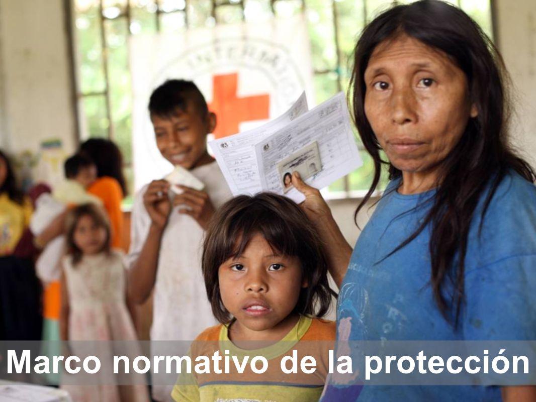 Marco normativo de la protección