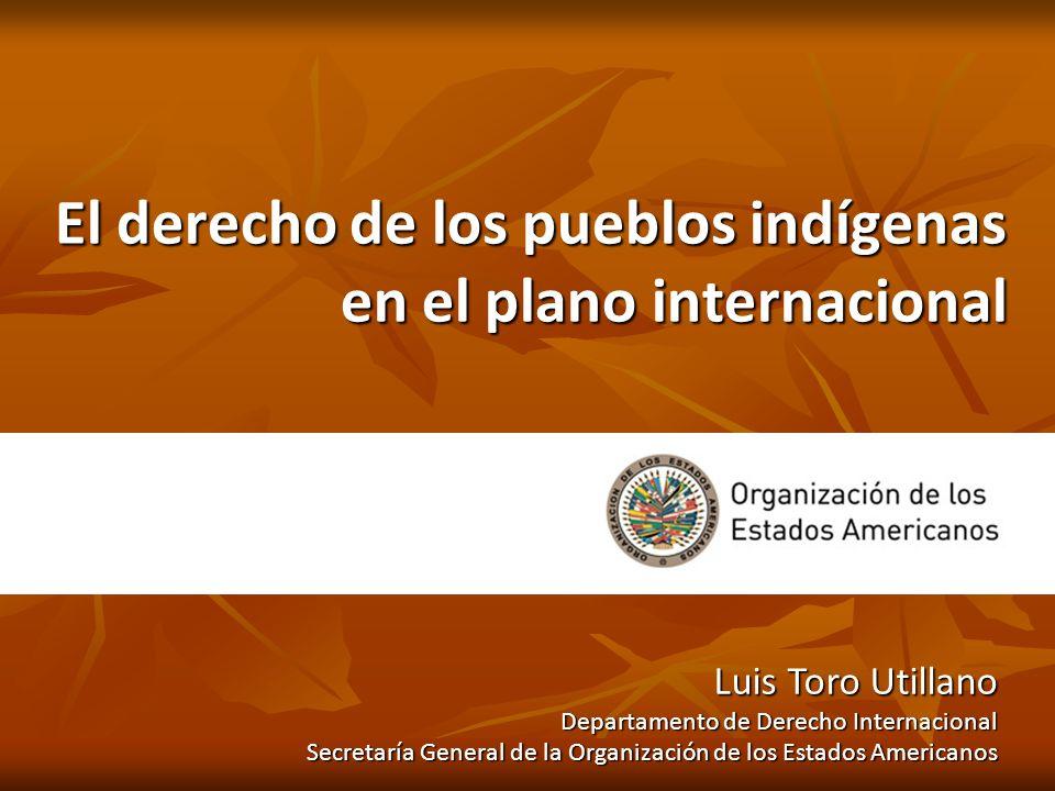 El derecho de los pueblos indígenas en el plano internacional Luis Toro Utillano Departamento de Derecho Internacional Secretaría General de la Organi