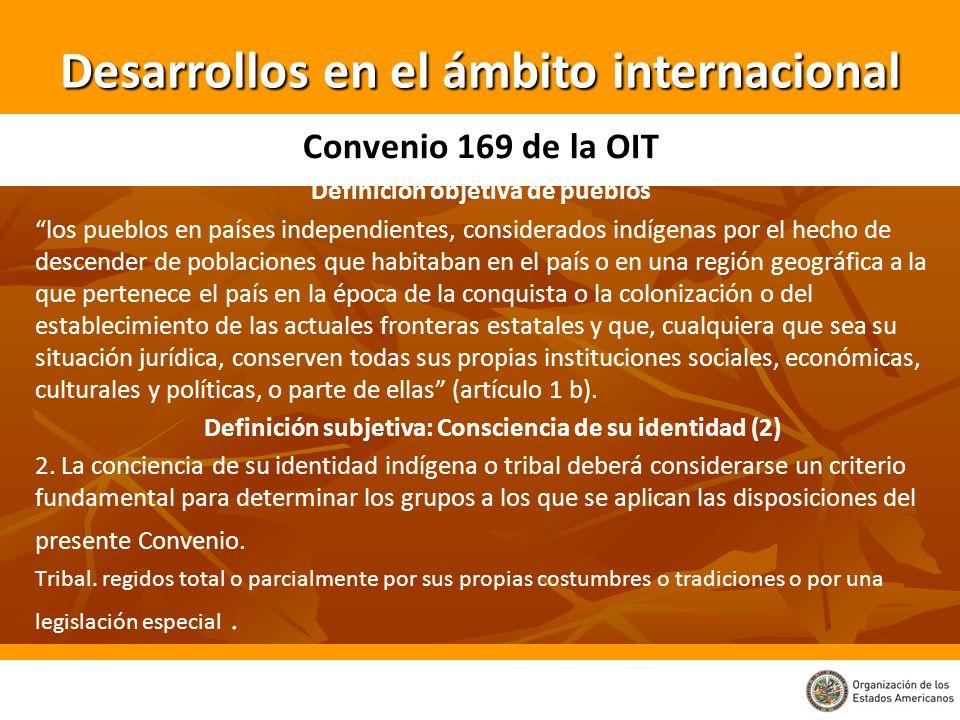 Desarrollos en el ámbito internacional Convenio 169 de la OIT Definición objetiva de pueblos los pueblos en países independientes, considerados indíge