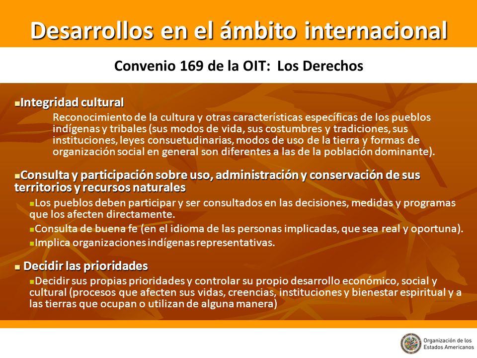 Desarrollos en el ámbito internacional Convenio 169 de la OIT: Los Derechos Integridad cultural Integridad cultural Reconocimiento de la cultura y otr