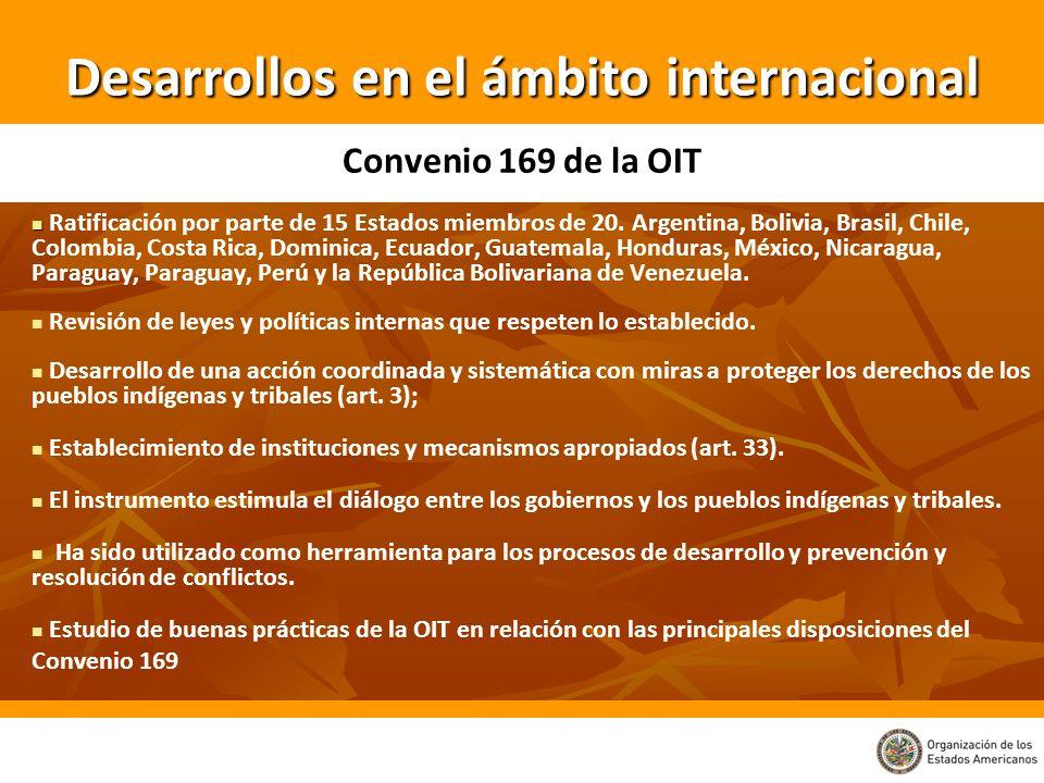 Desarrollos en el ámbito internacional Ratificación por parte de 15 Estados miembros de 20. Argentina, Bolivia, Brasil, Chile, Colombia, Costa Rica, D